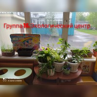 inCollage_20210513_182518984.jpg